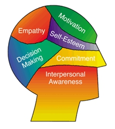 an image of a human head with words and colours on the head, the colour red has the word empathym the colour green has the word motivation in it, the colour purple has the words self-esteem in it, the colour blue has the words Decision Making in it, the colour yellow has the word commitment in it, and the last area is red-orange has the words Interpersonal Awareness in it